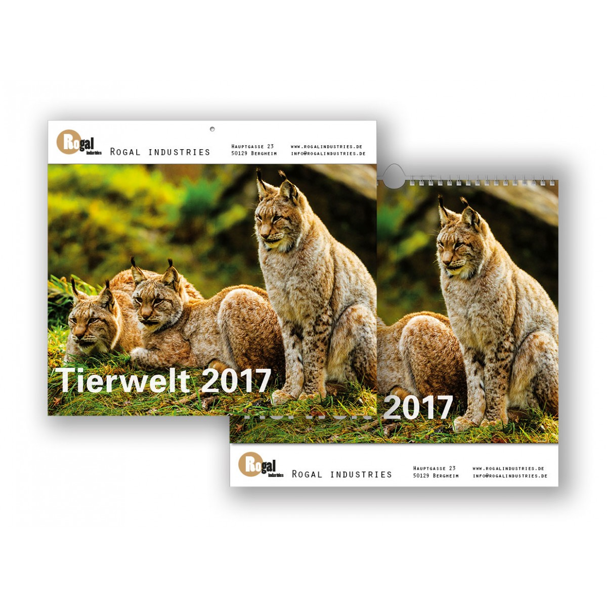 Bildkalender Modell Tierwelt