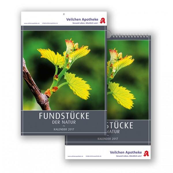 Bildkalender Modell Fundstücke der Natur